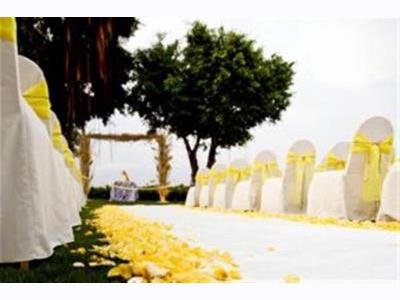 -24h chuyên dịch vụ cưới hỏi: trang trí nhà đám cưới hỏi, nhà hàng tiệc cưới, nhân sự bưng mâm quả, cổng hoa, xe hoa, cắt dán chữ và tin tức cưới hỏi: đám cưới sao, lập kế hoạch cưới, làm đẹp ngày cưới- Lễ cưới ngoài trời màu vàng rực rỡ